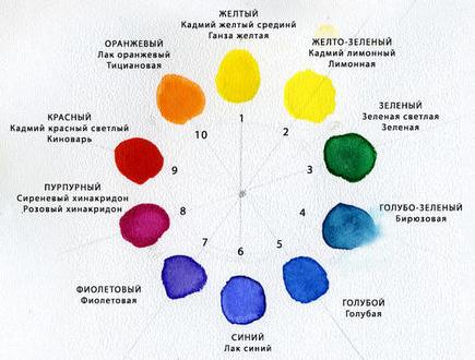 оттенки цветов фото: